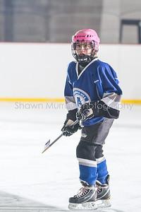 Snowbelt Hockey Tournament_012613_SH_1329