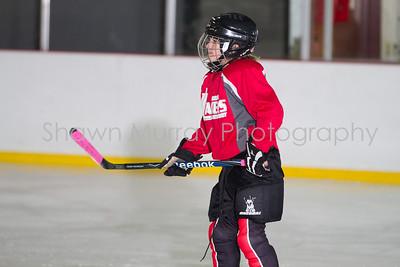 Snowbelt Hockey Tournament_012613_SH_1295