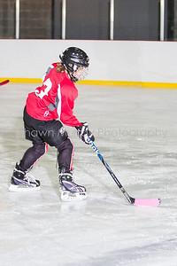 Snowbelt Hockey Tournament_012613_SH_1290