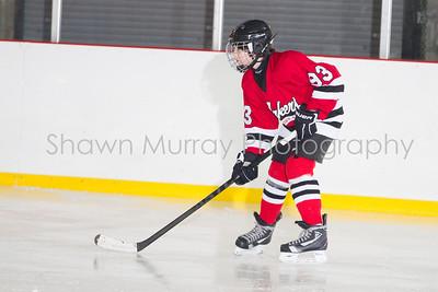 Snowbelt Hockey Tournament_012613_SH_1288