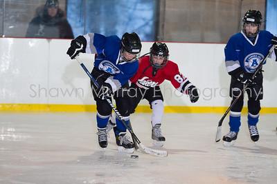 Snowbelt Hockey Tournament_012613_SH_1314