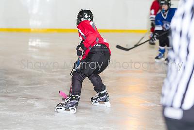 Snowbelt Hockey Tournament_012613_SH_1289