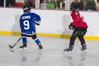 Snowbelt Hockey Tournament_012613_SH_1303