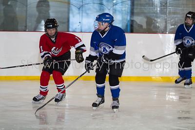 Snowbelt Hockey Tournament_012613_SH_1311