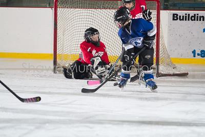 Snowbelt Hockey Tournament_012613_SH_1328