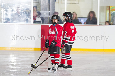 Snowbelt Hockey Tournament_012613_SH_1304