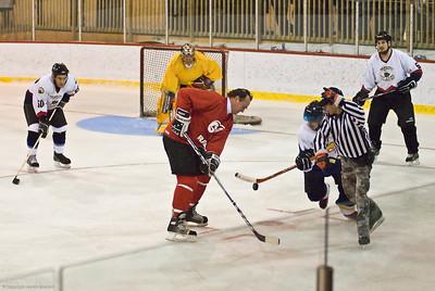 NHL Hockey Legends