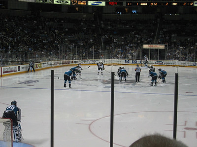 Sharks, March 2004