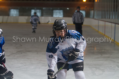 Snowbelt Hockey Tournament_012613_SH_0145