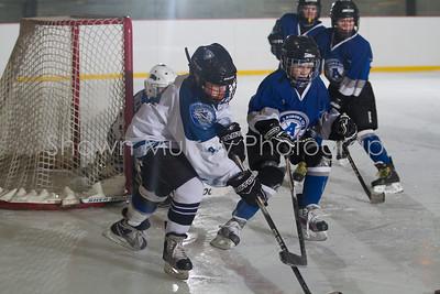 Snowbelt Hockey Tournament_012613_SH_0132