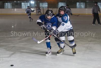 Snowbelt Hockey Tournament_012613_SH_0124