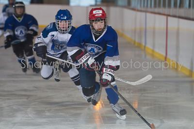 Snowbelt Hockey Tournament_012613_SH_0102