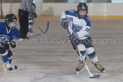 Snowbelt Hockey Tournament_012613_SH_0122