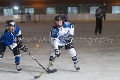 Snowbelt Hockey Tournament_012613_SH_0144