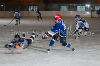 Snowbelt Hockey Tournament_012613_SH_0118