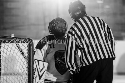 Snowbelt Hockey Tournament_012613_SH_0105