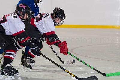 Snowbelt Hockey Tournament_012713_SH_2611