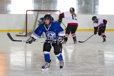 Snowbelt Hockey Tournament_012713_SH_2581