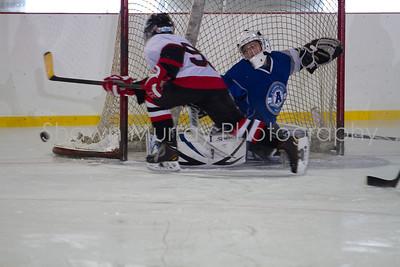 Snowbelt Hockey Tournament_012713_SH_2606