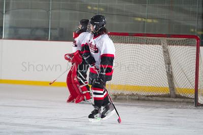 Snowbelt Hockey Tournament_012713_SH_2622