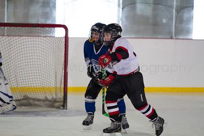 Snowbelt Hockey Tournament_012713_SH_2612