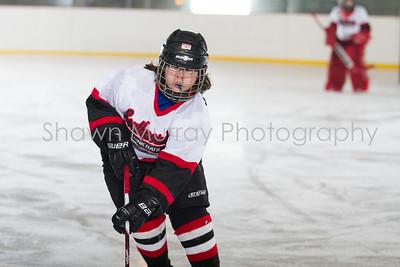Snowbelt Hockey Tournament_012713_SH_2586