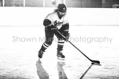 Snowbelt Hockey Tournament_012713_SH_2585