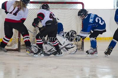 Snowbelt Hockey Tournament_012713_SH_2582