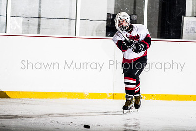 Snowbelt Hockey Tournament_012713_SH_2592