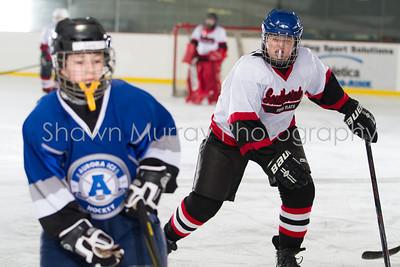 Snowbelt Hockey Tournament_012713_SH_2596