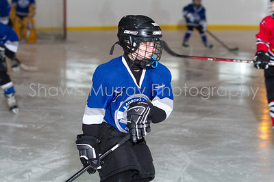 Snowbelt Hockey Tournament_012613_SH_0644