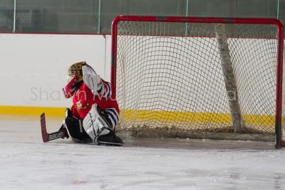 Snowbelt Hockey Tournament_012613_SH_0647