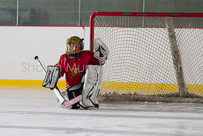 Snowbelt Hockey Tournament_012613_SH_0639