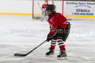 Snowbelt Hockey Tournament_012613_SH_0636