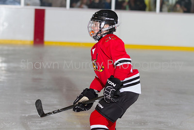 Snowbelt Hockey Tournament_012613_SH_0673