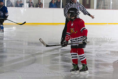 Snowbelt Hockey Tournament_012613_SH_0633