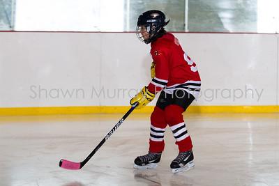 Snowbelt Hockey Tournament_012613_SH_0643