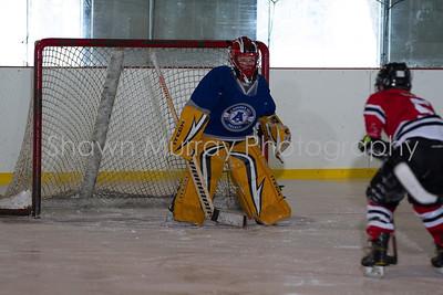 Snowbelt Hockey Tournament_012613_SH_0665
