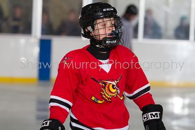 Snowbelt Hockey Tournament_012613_SH_0662