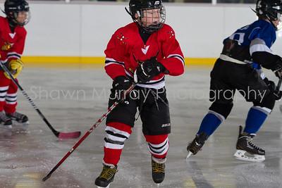 Snowbelt Hockey Tournament_012613_SH_0637