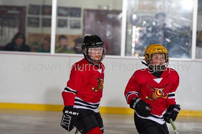 Snowbelt Hockey Tournament_012613_SH_0649