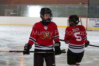 Snowbelt Hockey Tournament_012613_SH_0634