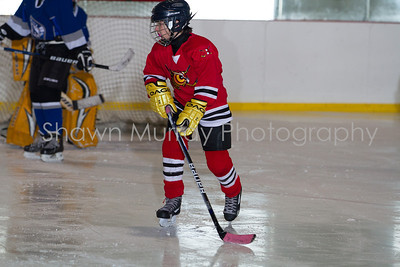 Snowbelt Hockey Tournament_012613_SH_0645