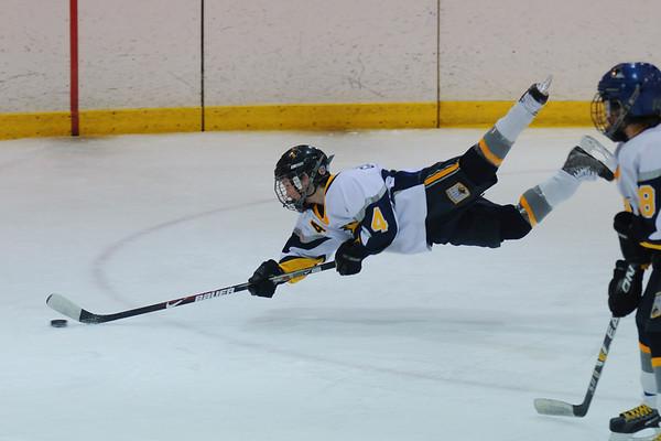 Youth Hockey Ashburn VA