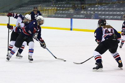 13 02 03 Bing v CF BCHSHA Hockey-038