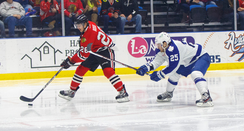 Hogs v Marlies 01-20-14