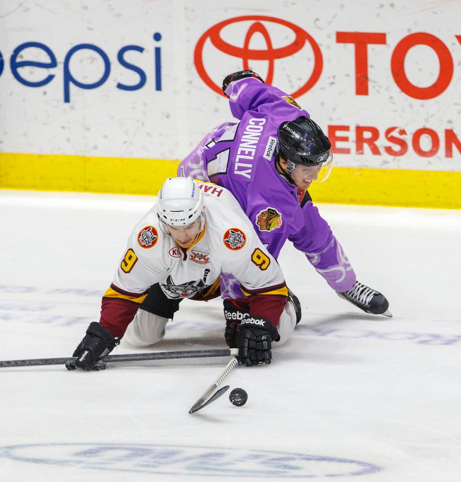 IMAGE: http://www.reicherstudios.com/Sports/HockeyPhotos/Hogs-vs-Griffins-03-30-14/i-VwMnF2R/0/X2/IMG_5641-X2.jpg