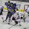 Icehogs 10.17.09