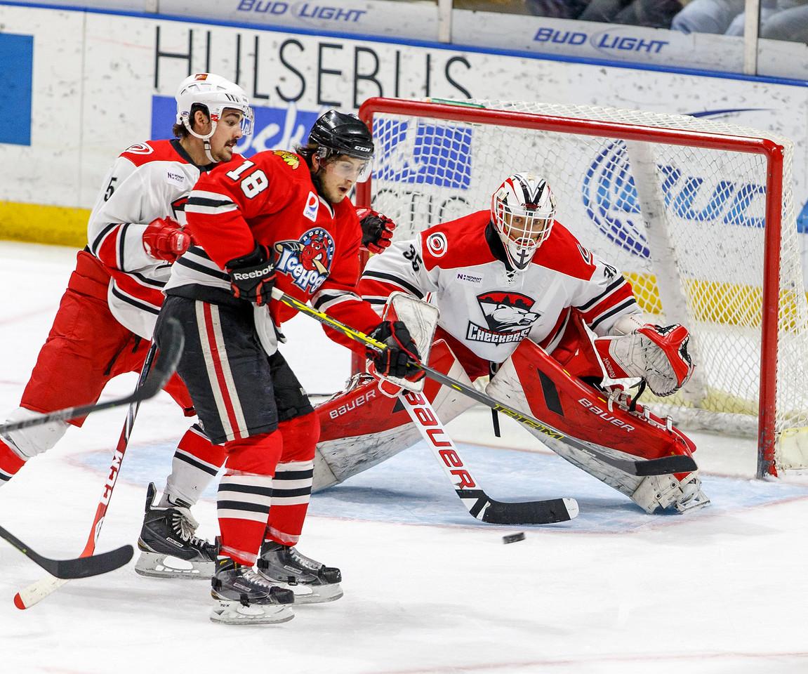 IMAGE: http://www.reicherstudios.com/Sports/HockeyPhotos/IceHogs-20142015/IceHogs-vs-Checkers-011315/i-pGDBkZr/0/X2/CC6Q0622-X2.jpg