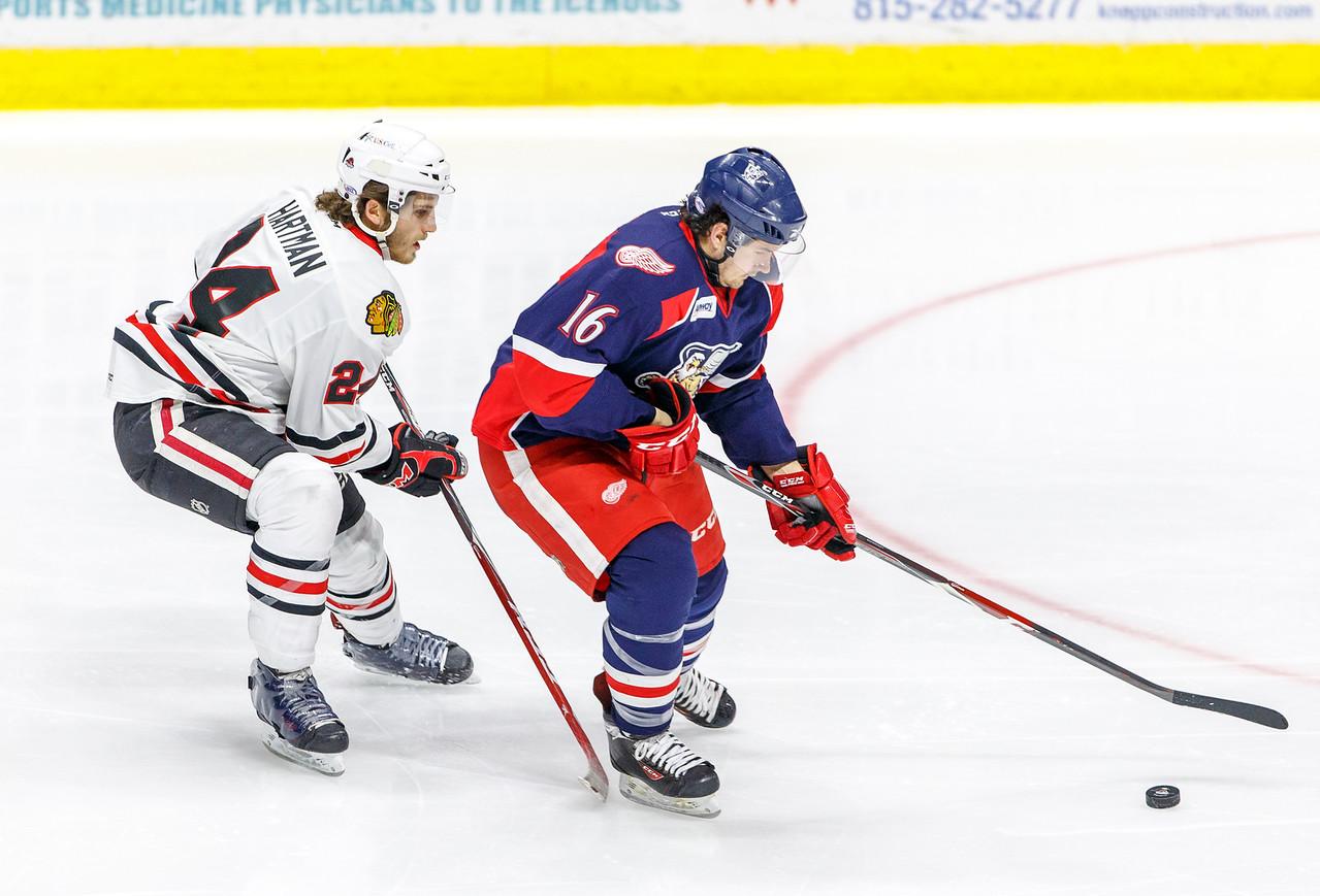 IMAGE: http://www.reicherstudios.com/Sports/HockeyPhotos/IceHogs-20142015/IceHogs-vs-Griffins-120614/i-MR8RzH8/0/X2/CC6Q8273-X2.jpg